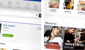 Nokia Facebook Strategy (Music Tab) Screenshots